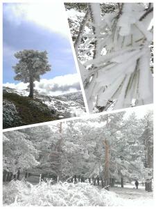 nieve-sierra-Baza